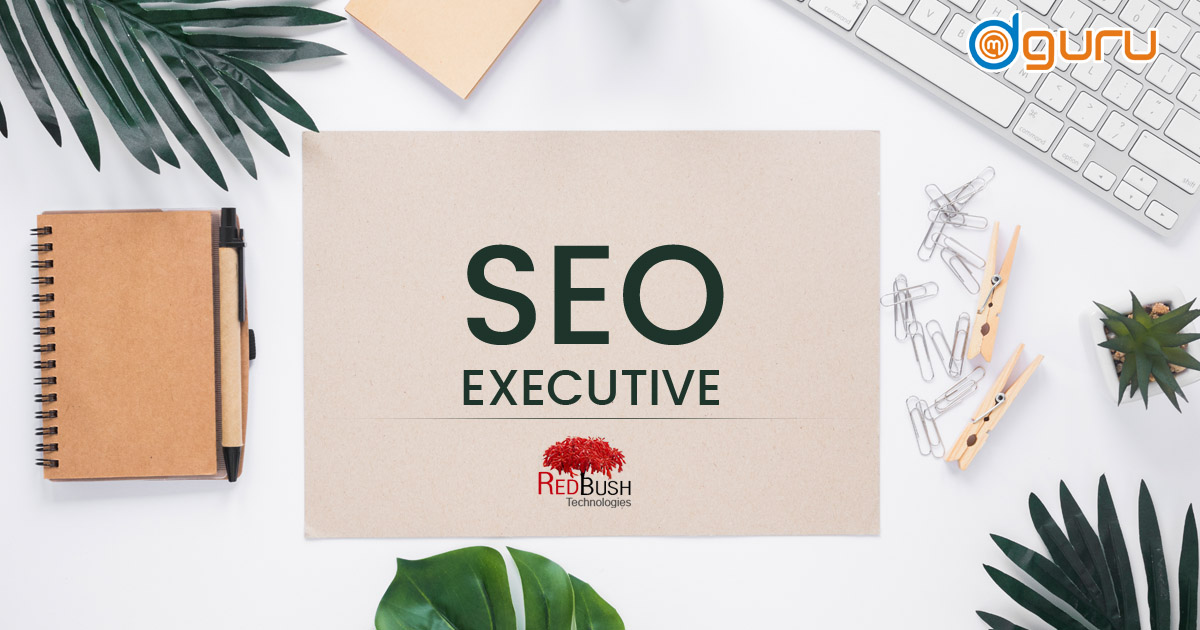 SEO Executive Job at RedBush Technologies Gurgaon India